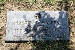 Hayden Dee Walker