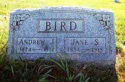 Andrew Jackson Bird