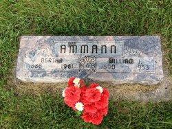 William J Ammann