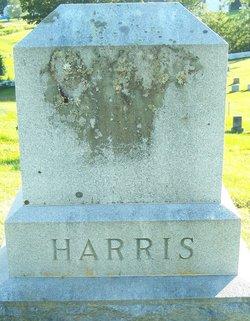 Bertha Anna <I>Martin</I> Harris