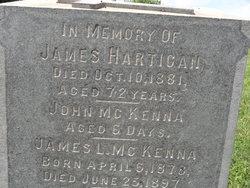 James L McKenna