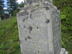 Harriet Ellen <I>Sumner</I> Miner
