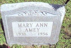 Mary Ann Amey