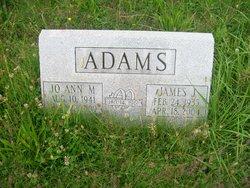 JoAnn M <I>Rafferty</I> Adams