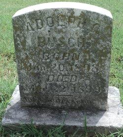 Adolph C Busch