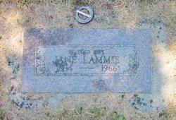 Jane Lammie