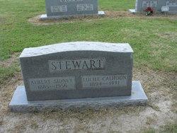 Albert Sidney Stewart