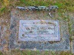 Walter D Volhard