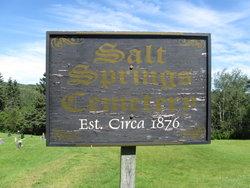 Salt Springs Baptist Cemetery, Upham Parish