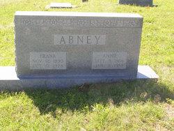 Annie Elizabeth <I>Willis</I> Abney