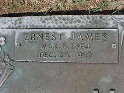 Ernest James Martin
