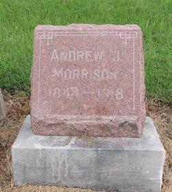 Andrew J Morrison