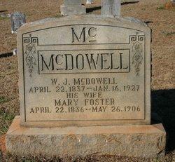 William James McDowell