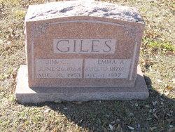 Jim C Giles