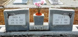 Zula <I>Fountain</I> Bracewell