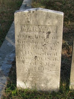 Mary A Allyn