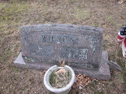 Viola Jane <I>Ammerman</I> Wilson