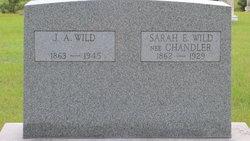 "Sarah Elizabeth ""Sadie"" <I>Chandler</I> Wild"