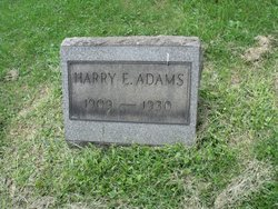 Harry E Adams