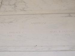Lawrence C Amorosi