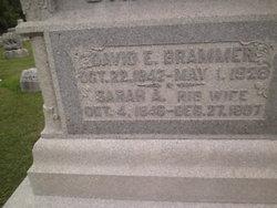Sarah Ann <I>Brammer</I> Brammer