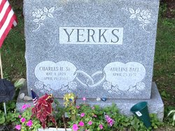 Aleline Ball Yerks