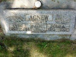 Doris A Agnew