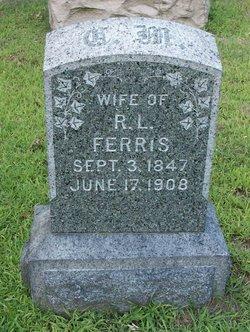 Cynthia P <I>Manning</I> Ferris
