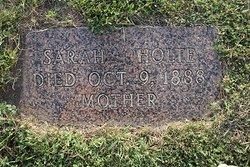 Sarah <I>Johnson</I> Holte