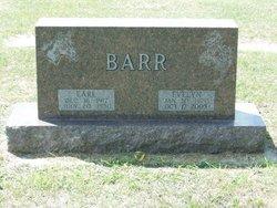 Evelyn Mabel <I>Harrington</I> Barr