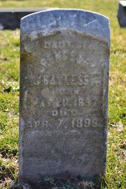 Gladys Bayless