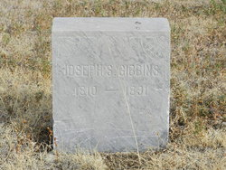 Joseph S Gibbins