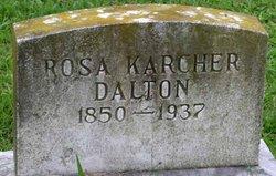 Rosa <I>Karcher</I> Dalton