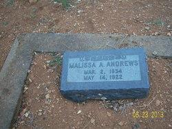 Malissa Ann Andrews