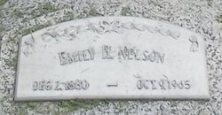 Emily H <I>Peterson</I> Nelson