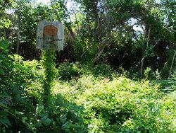 Bell Cemetery at Marshallberg