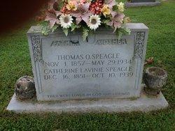 Catherine Lavina <I>Canipe</I> Speagle