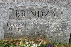 Mik Brindza