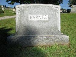 Laura Eliza <I>Patterson</I> Barnes