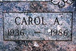 Carol Ann Aamodt