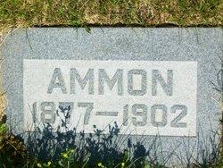 Ammon Halling