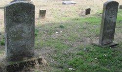 Lucretia Alabama <I>Springfield</I> Platt