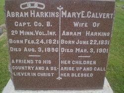 Mary Elizabeth Harkins