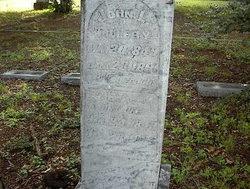 Elizabeth Ann <I>Hafley</I> Tillery