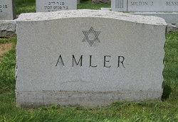 Max Amler