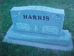 """Ann Elizabeth """"Theresa"""" <I>Depew</I> Harris"""