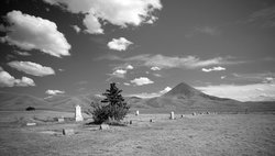 Gold Butte Cemetery