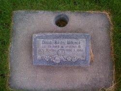 David Brian Walker
