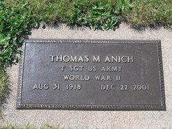 Thomas M Anich