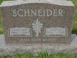 Lloyd Schneider